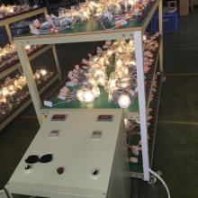 定制LED球泡灯老化架 灯管老化线 氙气灯老化设备 灯具老化架