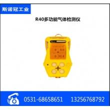 便携式可燃有毒多功能气体检测仪R40